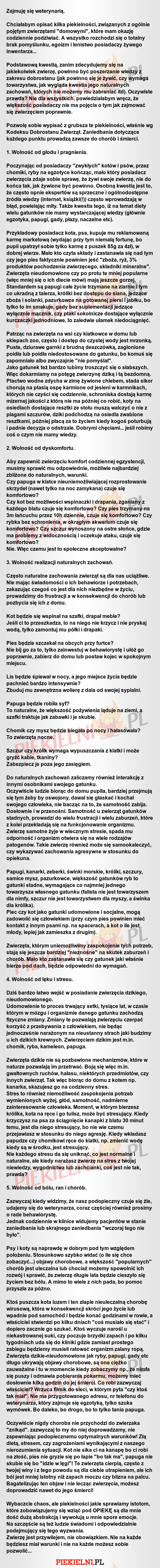 Greckie pytania dotyczące szybkiego randkowania